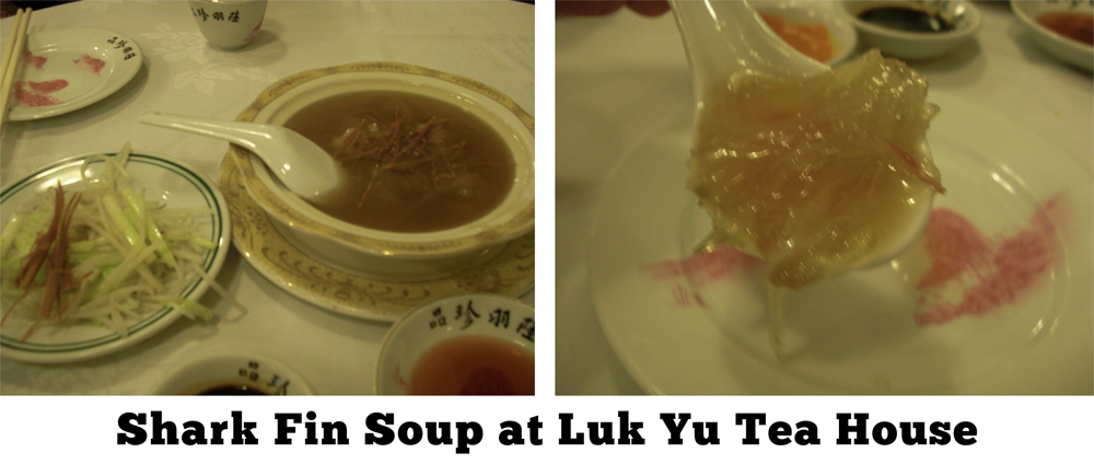 Shark-Fin-Soup-at-Luk-Yu-Tea-House